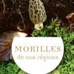 MORILLES_COUV